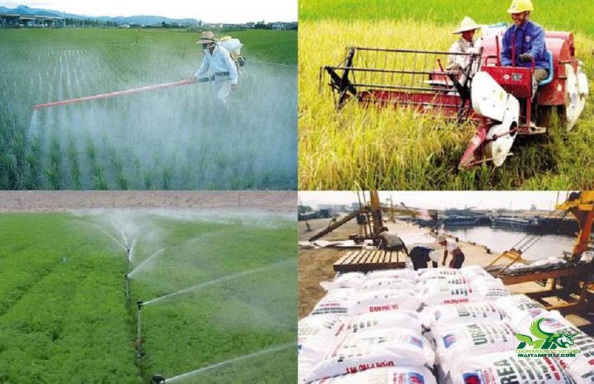 Hàng hóa phục vụ nuôi trồng không chịu thuế GTGT
