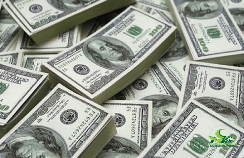 Ghi rõ loại tiền dùng để thanh toán